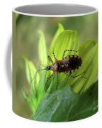 Brown Insect Coffee Mug