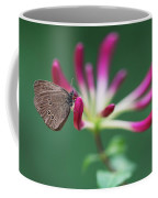 Brown Butterfly Resting On The Pink Plant Coffee Mug