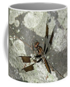 Brown Dragonfly  Coffee Mug