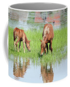 Brown Horse And Foal Nature Spring Scene Coffee Mug