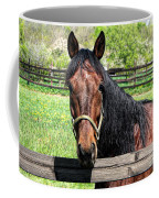 Brown Horse In A Corral Coffee Mug