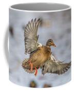 Brown Mallard Landing Coffee Mug