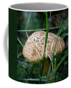Brown Mushroom Squared Coffee Mug
