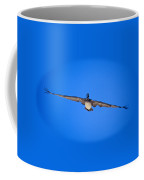 Brown Pelican Flying Coffee Mug