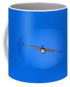 Brown Pelican Flying Coffee Mug