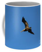 Brown Pelican Soars Above Coffee Mug