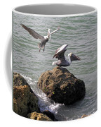 Brown Pelicans In Florida  Coffee Mug