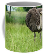 Browsing Ostrich Coffee Mug