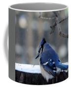 Brrrr.... Coffee Mug