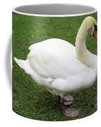 Bruges Swan 1 Coffee Mug