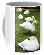 Bruges Swans 2 Coffee Mug