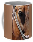 Bryce Canyon Horse Portrait Coffee Mug
