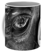 Bryce Canyon National Park Horse Bw Coffee Mug