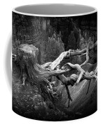 Bryce Canyon Tree Stump On A Ridge Coffee Mug