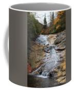 Bubbling Spring Branch Cascades Coffee Mug