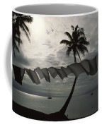 Buca Bay, Laundry And Palm Trees Coffee Mug by James L. Stanfield