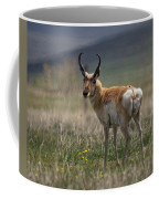 Buck Antelope  Coffee Mug