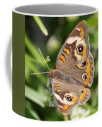 Buckeye Butterfly Square Coffee Mug