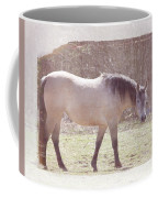 Buckskin Horse  Coffee Mug