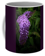 Buddleia Flower Coffee Mug