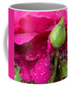 Buds And Drops Coffee Mug