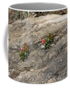 Buds Of Beauty Within Harshness Coffee Mug