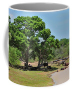 Buffalo At Hambantota Coffee Mug
