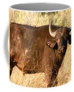 Buffalo Encounter Coffee Mug
