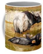 Water Buffalo Family Portrait Coffee Mug
