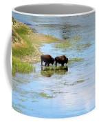 Buffalo Walk Coffee Mug