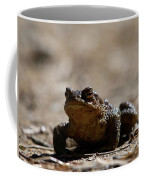 Bufo Bufo 2 Coffee Mug