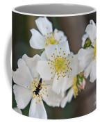 Bugaboo Apple Blossoms Coffee Mug
