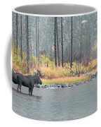 Bull And Cow Moose In East Rosebud Lake Montana Coffee Mug