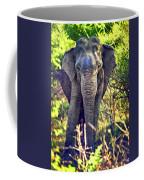 Bull Elephant Threat Coffee Mug