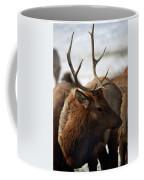 Bull Elk At Hardware Ranch 2 Coffee Mug