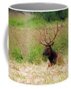 Bull Elk At Rest Coffee Mug