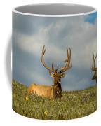 Bull Elk Friends For Now Coffee Mug