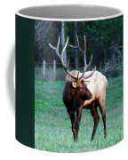 Bull Elk II Coffee Mug