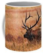 Bull Elk In A Field Coffee Mug