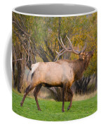 Bull Elk In Rutting Season Coffee Mug