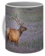 Bull Elk In Velvet Coffee Mug