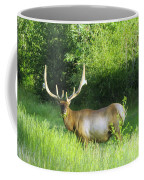 Bull Elk In Velvet  Coffee Mug by Jeff Swan