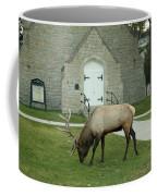 Bull Elk On The Church Lawn Coffee Mug