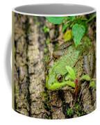 Bull Frog On A Log Coffee Mug