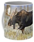 Bull Moose Crossing The Sage  Coffee Mug
