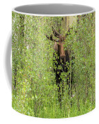 Bull Moose Guards The Aspen Coffee Mug