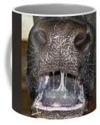 Bull Nose Coffee Mug