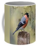 Bullfinch Bird Coffee Mug