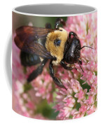 Bumble Bee Macro Coffee Mug
