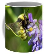 Bumblebee On A Blue Giant Hyssop Coffee Mug